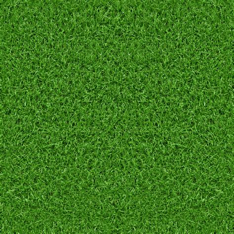 Green Grass green grass texture free textures all design creative