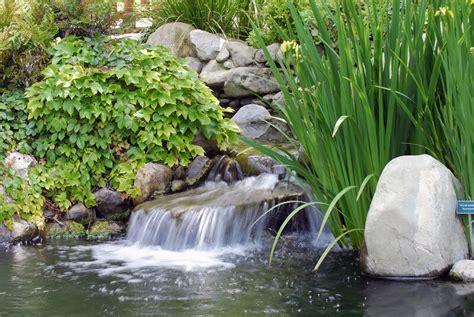 Teichpflanzen Gegen Algen 1301 by Quellsteine B 228 Che Brunnen Und Co