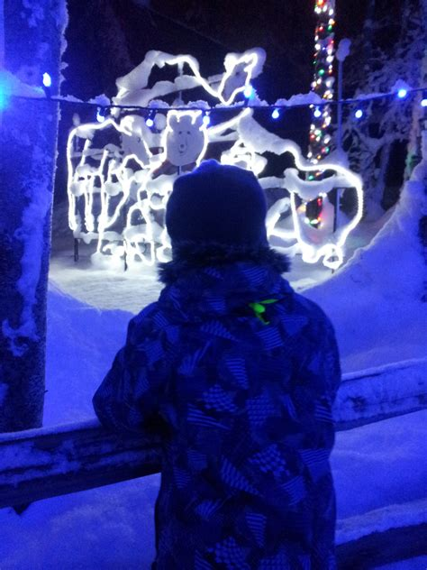 Alaska Zoo Lights Up Northern Nights Ak On The Go Alaska Zoo Lights