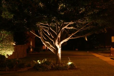 Landscape Lighting Ideas Trees Outdoor Lighting Design