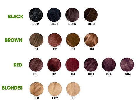 garnier nutrisse hair color chart garnier nutrisse haircolor r1