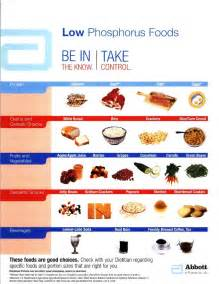 free renal diet food list discoverygala