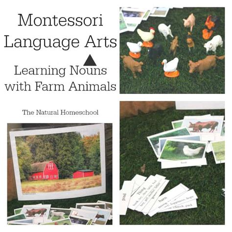 montessori grammar printable montessori language arts learning nouns with free farm