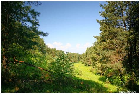 imagenes de paisajes uñas paisajes naturales recomendado taringa