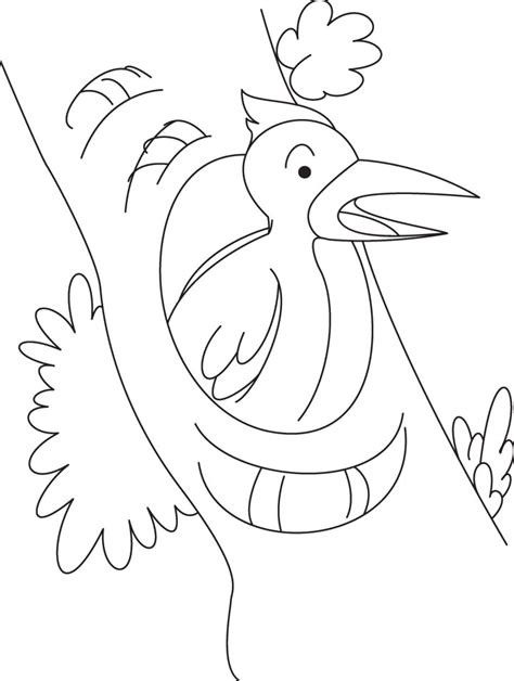 yellowhammer coloring page yellowhammer bird page for coloring pages