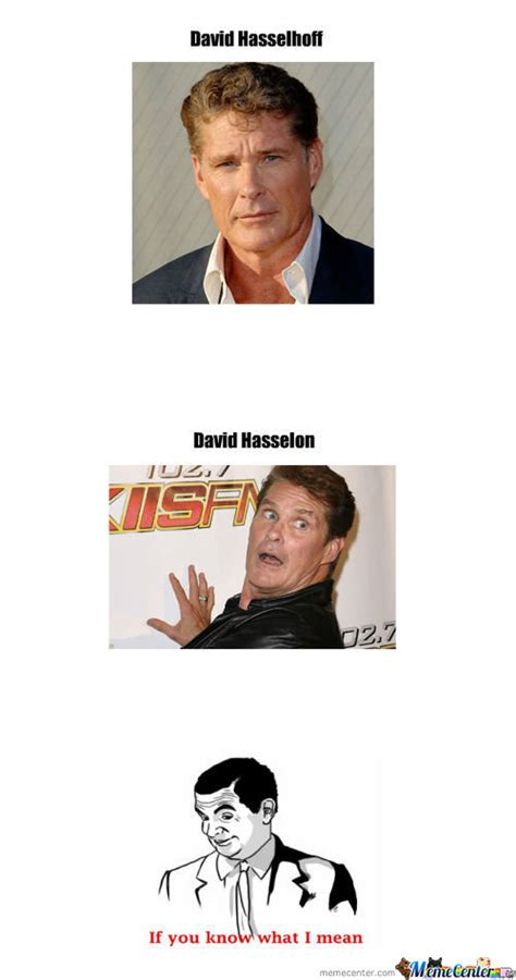 David Hasselhoff Meme - david hasselhoff memes best collection of funny david