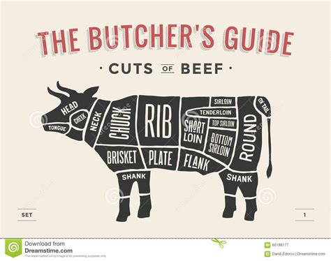 beef cuts diagram butcher cut of beef set poster butcher diagram and scheme cow