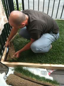 Dog Grass For Patio by Super Dog Charlie Pants And Me Dog Potty For Patio Build