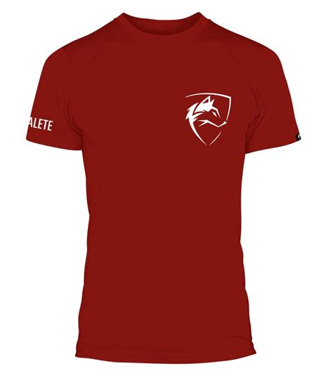 Hoodie Alphalete Athletics Zalfa Clothing 11 best images about alphalete athletics on