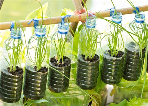 garden in a bottle grow up how to design vertical gardens for tiny spaces inhabitat green design innovation