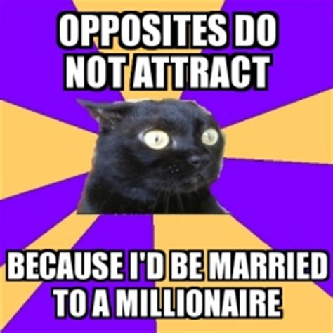 Ways To Attract A Millionaire by Meme Anxiety Cat Opposites Do Not Attract Because I D Be