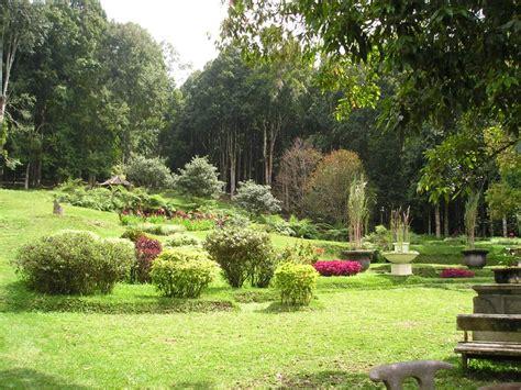 Bali Botanic Gardens Bedugul Botanical Garden Kebun Raya Bali 171 Tour Driver Bali Island