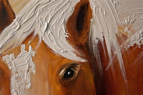 Stars Home Decor figure painting horse head on white background large 5894