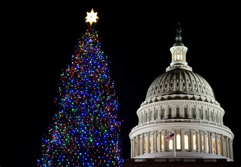 2005 u s capitol christmas tree lighting ceremony u s