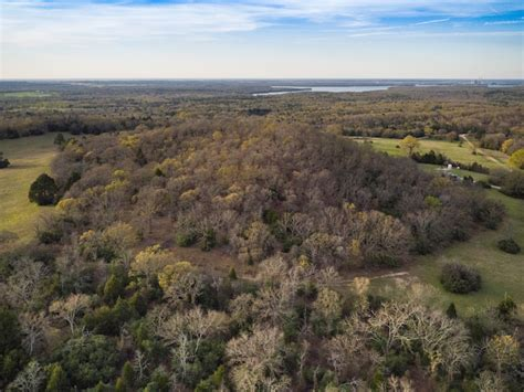 Pilot Knob by Picturesque Pastures Diverse Hardwood Canopy Stocked