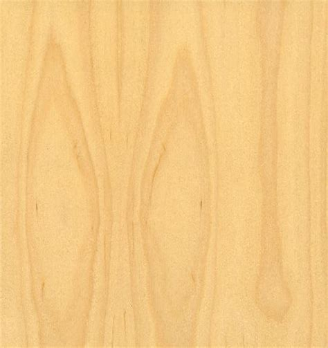 Mapple White by Commercial Solid Maple Door White Maple Interior Door