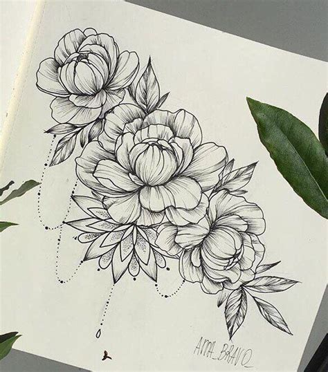 peony flower tattoo best 25 peony drawing ideas on