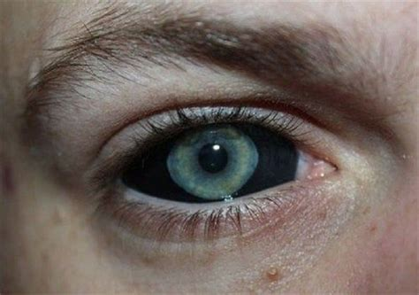 tattoo eye color 10 weird and crazy places to get a tattoo