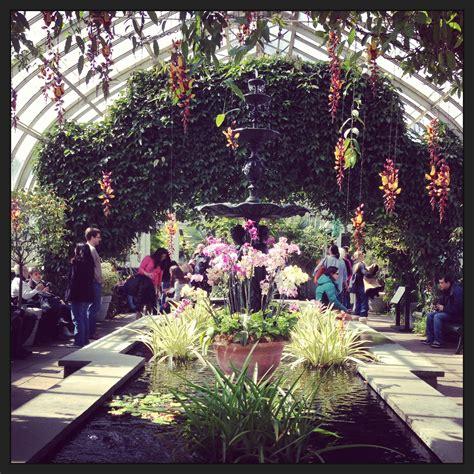 botanical gardens  nyc beautiful flower arrangements