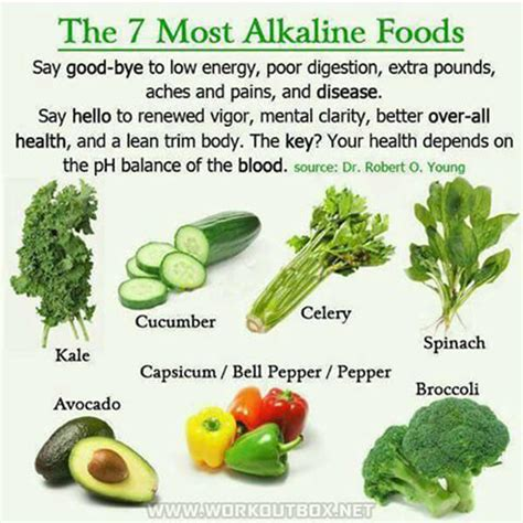 the 7 most alkaline foods high energy healthy fitness