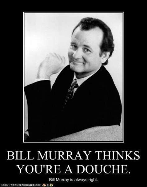 what about bob bill murray quotes bill murray quotes