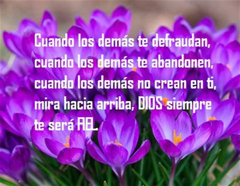 imagenes cristianas con flores 17 best images about flores y frases on pinterest posts