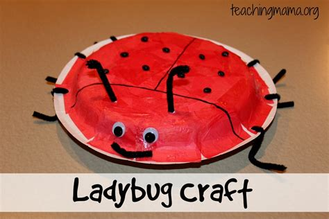 count the ladybugs dragonfly guys books 8 insect crafts for