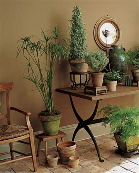 floor plants home decor 15 gorgeous phyto design ideas and indoor plants for