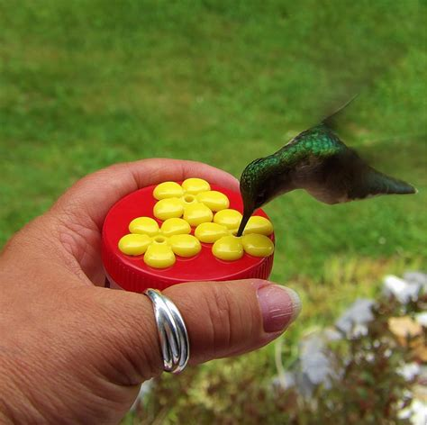 hum drum hand held hummingbird feeders made handcrafted