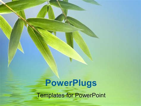 Powerpoint Template Bamboo Leaves With Reflection On Water Surface 21375 Bamboo Powerpoint Template