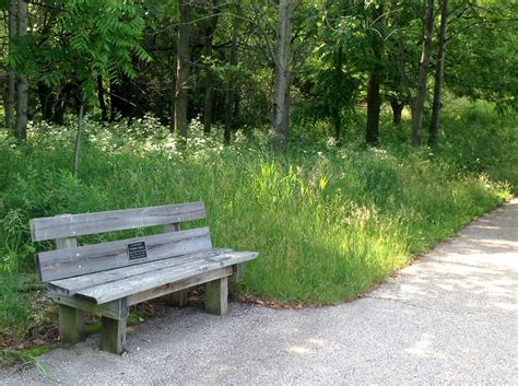 how to get a memorial bench how to memorialize a death with memorial benches
