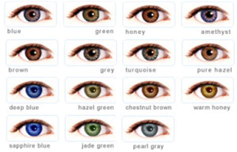 colored contacts at walmart colored contacts prescription cheap