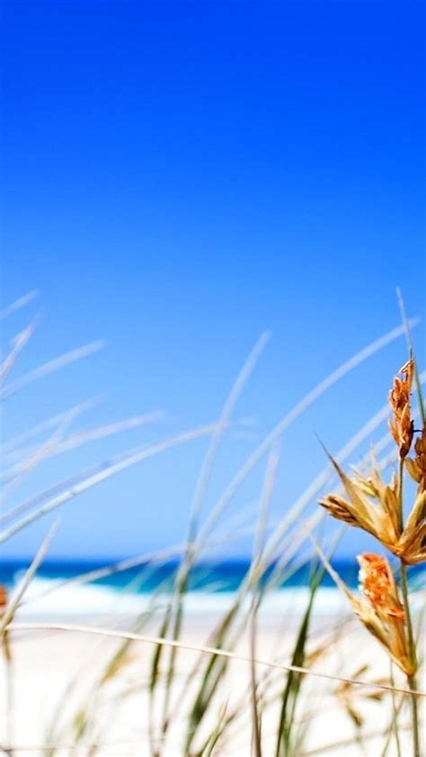 beautiful beach big blue sky  hd wallpapers sunny