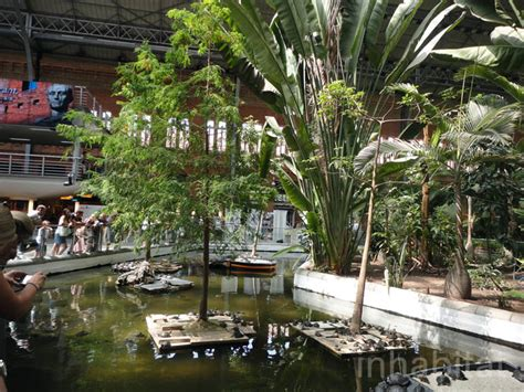 Tropical Indoor Garden - madrid s atocha station doubles as an indoor botanical garden and turtle sanctuary atocha