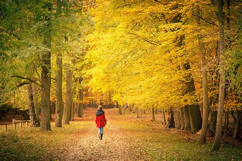 how to your to walk next to you walk slowly tiny mindful habits to help enhance your day popsugar fitness australia