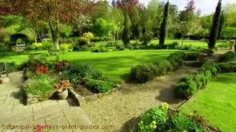 Trees For Small Backyards Backyard Landscape Design Photos Pictures Landscaping Ideas