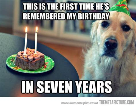 Birthday Dog Meme - funny dog birthday make2fun