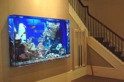 aquarium design guidelines home aquarium ideas the aquarium buyers guide home