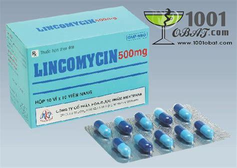 Obat Mefinal obat lincomycin obat dan vitamin kelinci embun daun lincomycin mefinal dan ponstan moko apt