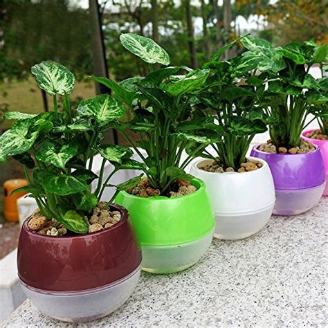 self watering vegetable garden self watering containers for vegetable garden the