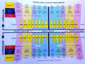 Galerry acupuncture points chart