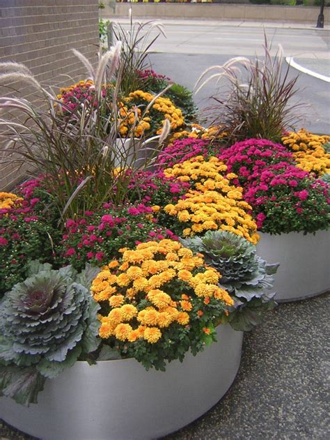 Fabulous Fall Flower Containers Gardens Fall Flowers Fall Flower Garden