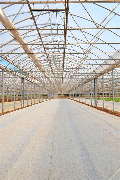 sede legale coop azienda pontinatura soc coop agricola