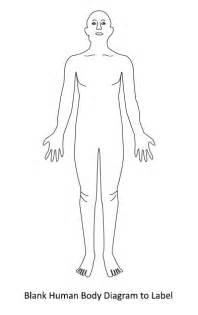Learn the basics and understand the human body better click on the