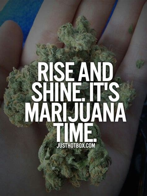 wake and bake quotes quotesgram
