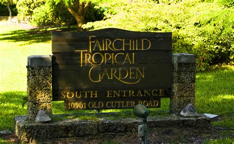 fairchild tropical botanical gardens annual food and garden festival at fairchild tropical