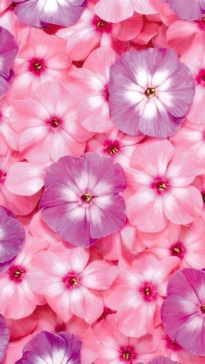 wallpaper girly flowers beach dreams fashion flower girl girly iphone