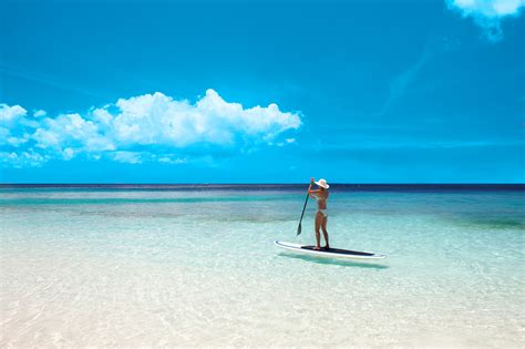 paddle board with paddle board 12 ft yolo board w paddle reef rentals services