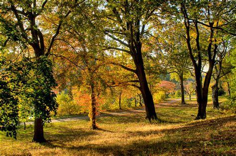Landscape Architecture South Carolina Photographer South Carolina Landscape
