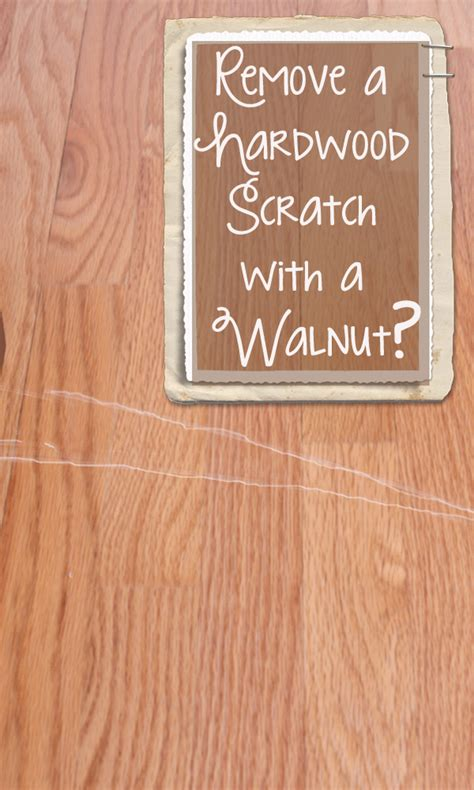Hardwood Floor Scratch Repair You Did What With A Walnut 171 Thriftdee